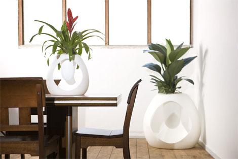 租赁什么绿化植物适合放在办公室