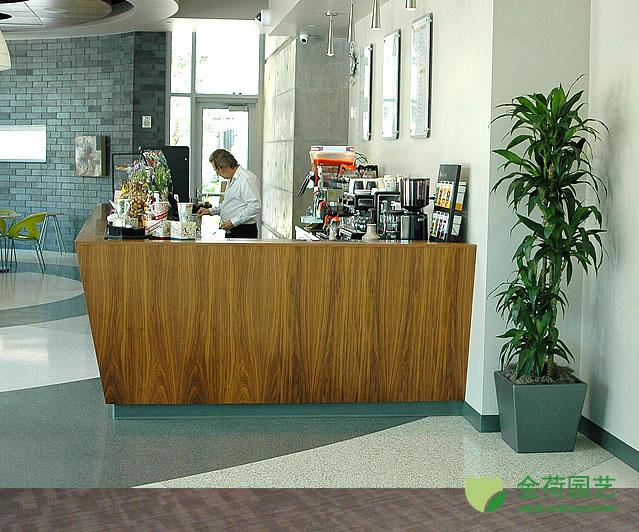 效果图 写字楼/写字楼办公室休闲区域绿化效果图(61)