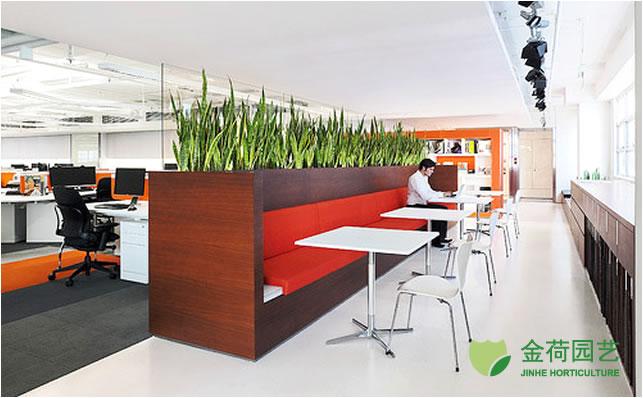 6 Creative Small Home Office Ideas: ņ�字楼办公室隔断绿化效果图(75)_绿植租赁养护_上海金荷园艺