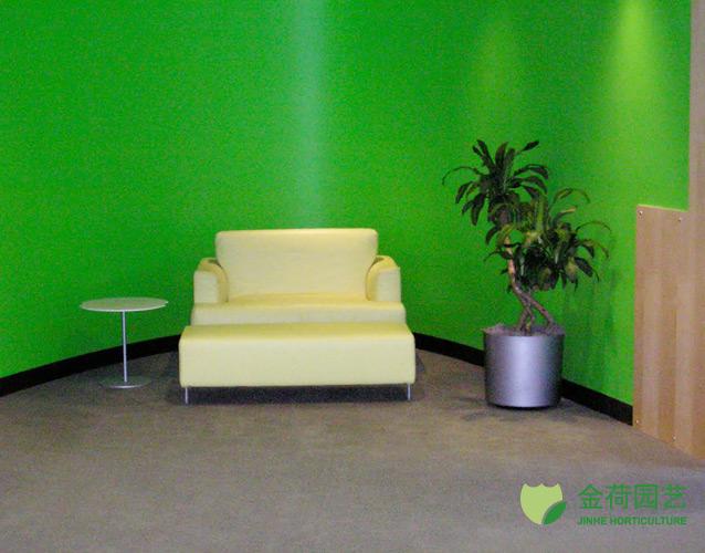 效果图 写字楼/写字楼办公室前台绿化效果图(94)