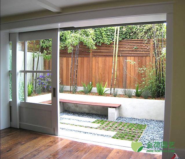 植物/写字楼办公室阳台绿化效果图(92)