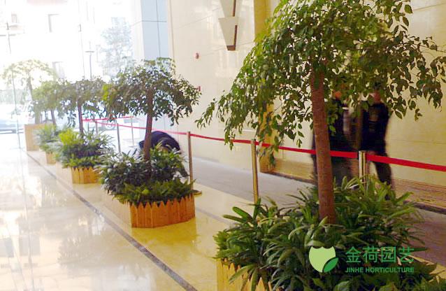 写字楼办公室大堂绿化效果图(4)_绿植租赁养护_上海金