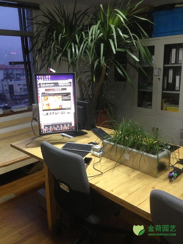 效果图 写字楼/写字楼办公室办公间绿化效果图(102)