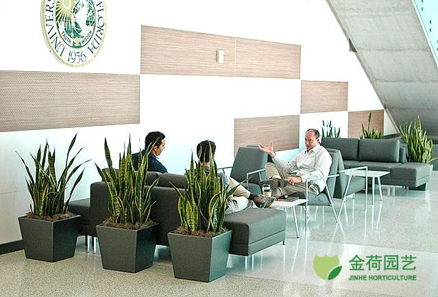 写字楼办公室公共区域绿化效果图(58)
