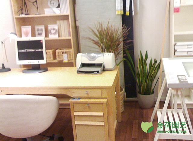 效果图 写字楼/写字楼办公室办公间绿化效果图(17)