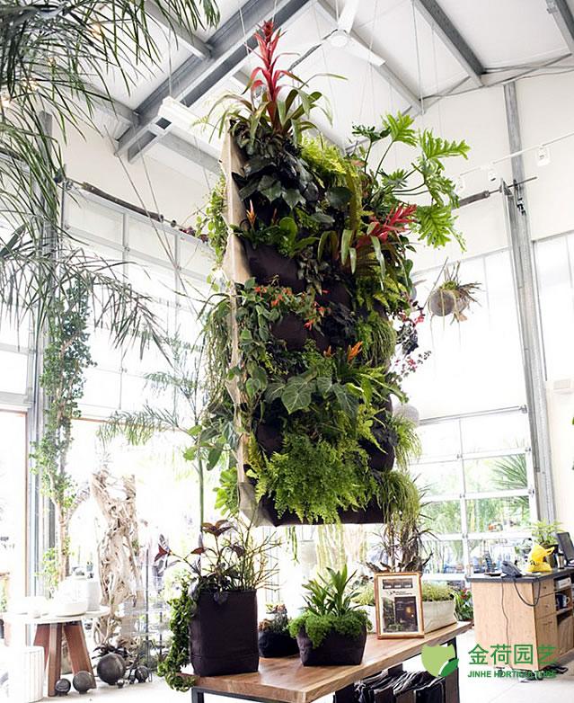 植物 写字楼/写字楼办公室休闲区域绿化效果图(56)