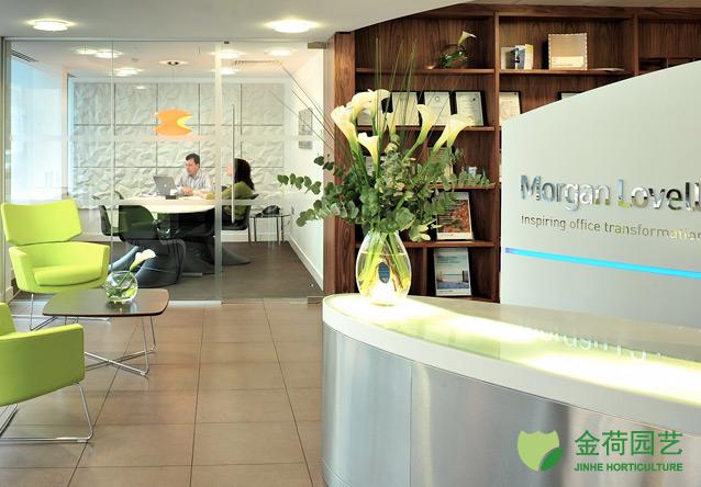 效果图 写字楼/写字楼办公室前台绿化效果图(90)